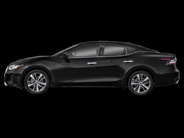 Nissan Maxima Photo